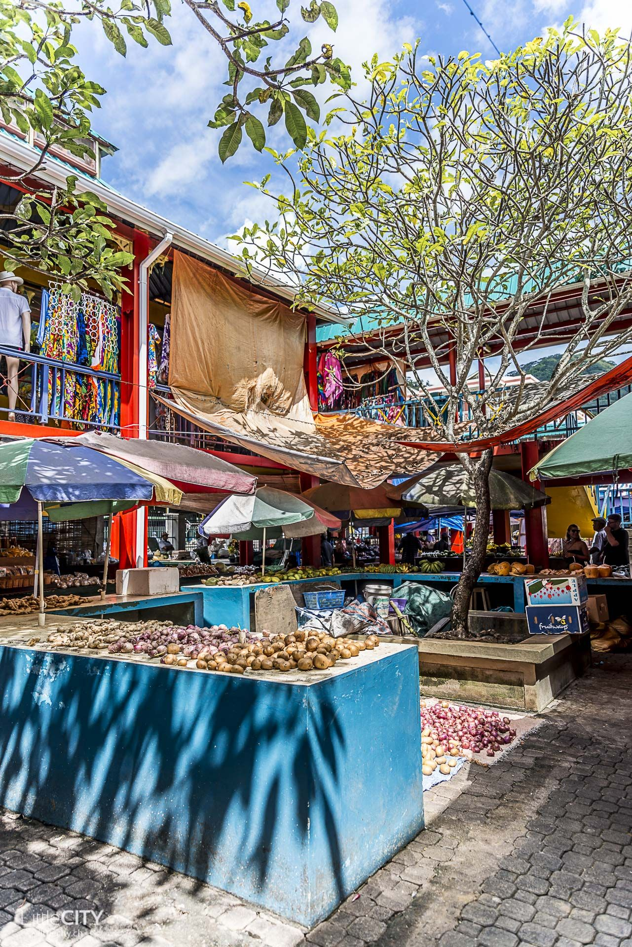 Seychellen Die Besten Reisetipps Von Mahe Praslin Bis La Digue Seychellen Reisen Reisetipps