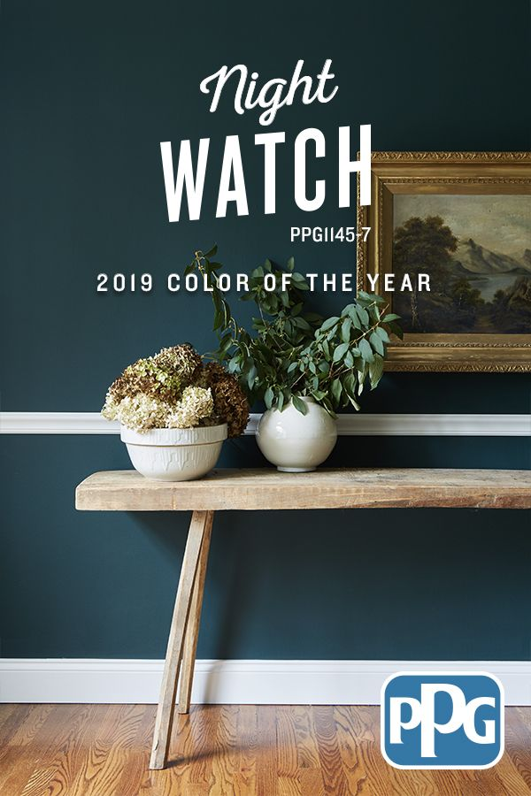 Ppg teamed up with hgtv designer leanne ford to transform - Night watch paint color ...