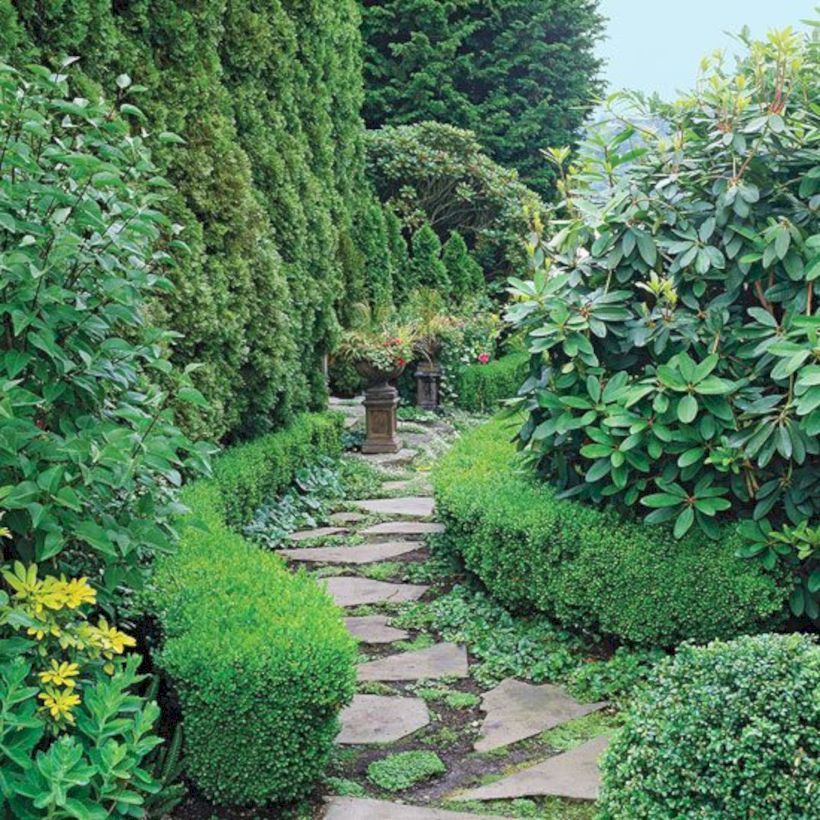 Pin by Quentine Decor on OUTDOOR Evergreen garden