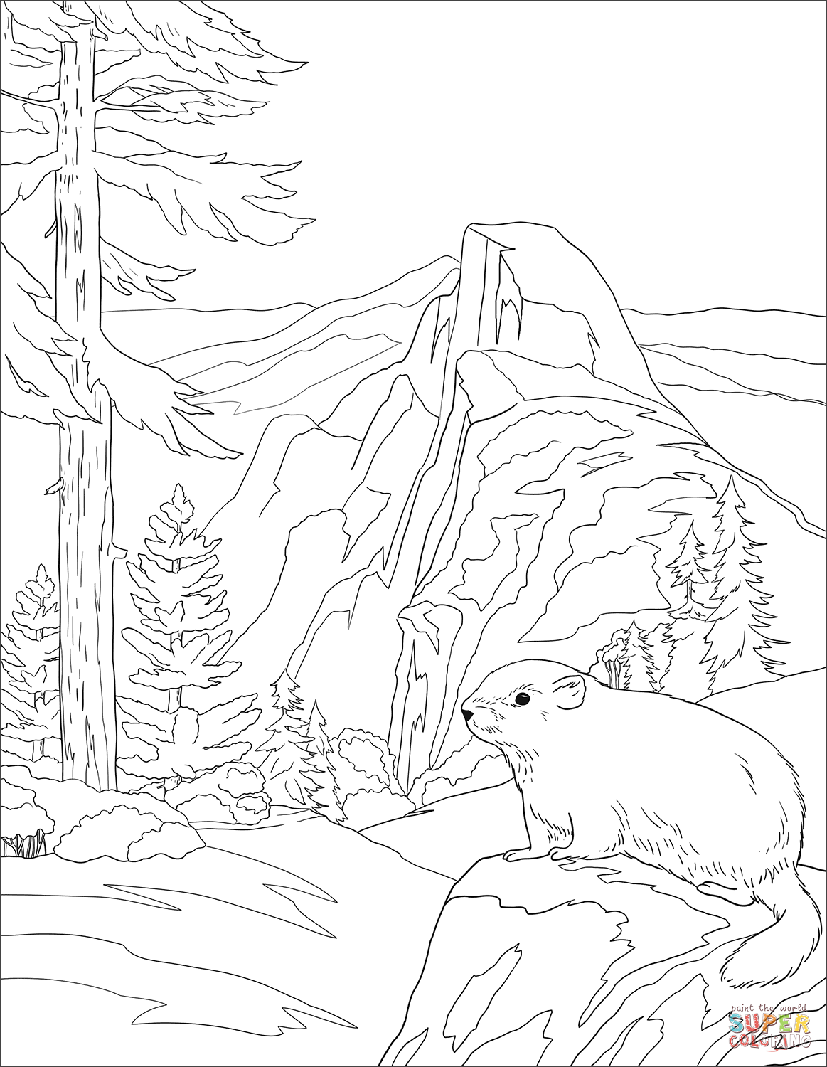 Yosemite National Park Coloring Page Free Printable Coloring