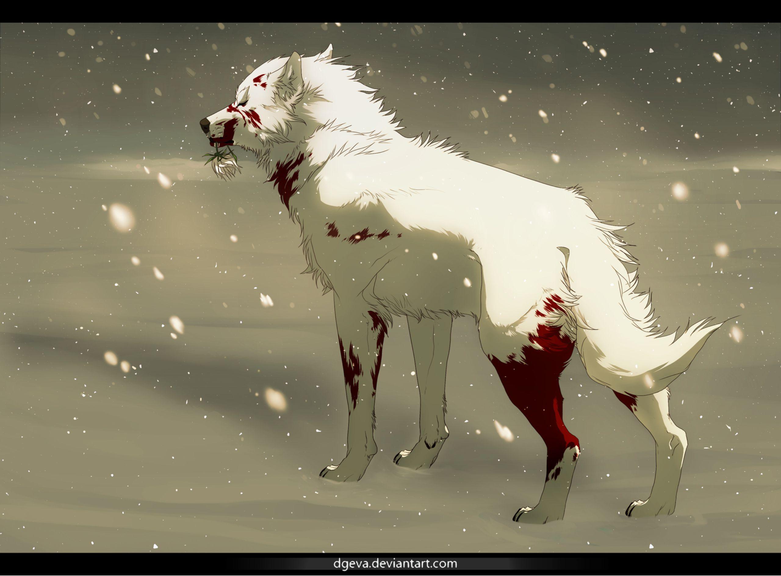 Image Result For Anime Wallpaper Raina