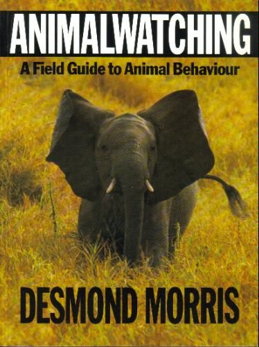 Peoplewatching The Desmond Morris Guide To Body Language Pdf