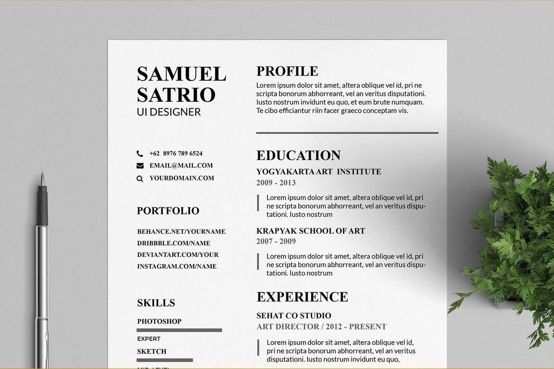 Pros Resume & CV Templates by VisualColony on Cv