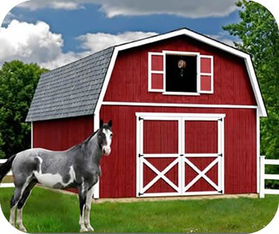 Best Barns Roanoke Barn Style Wood Storage Building Kit 16 x 24   Best  Barns is ideal for storage of lawn furniture  garden tools  bicycles   motorcycle. Great shed barn that can be made into a small tiny home  Best