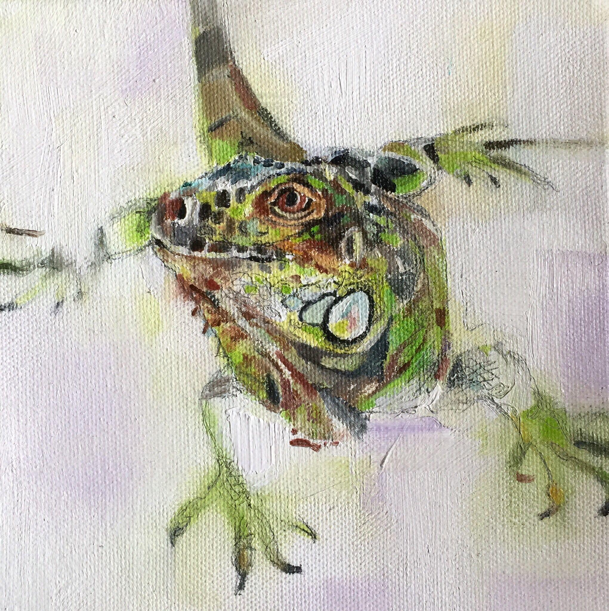 "Green iguana oil on canvas 6"" x 6"" by Julie Brunn"