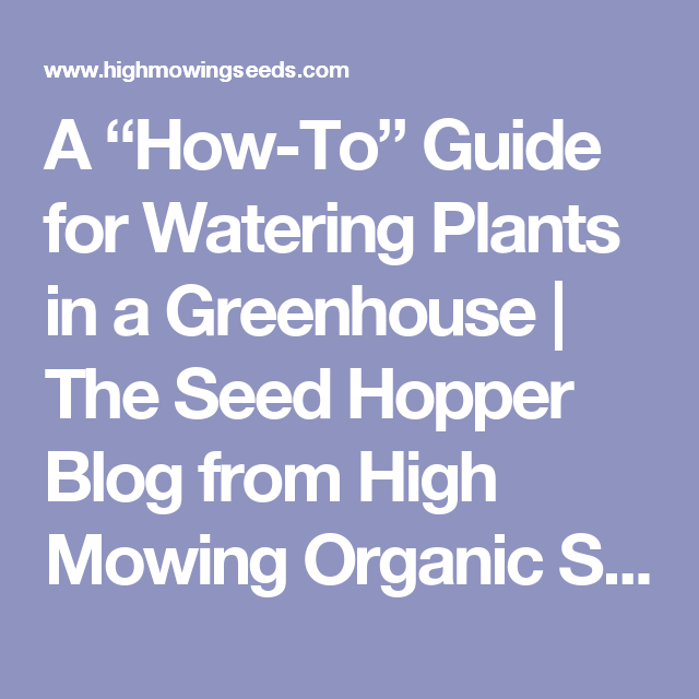 """A """"How-To"""" Guide for Watering Plants in a Greenhouse   The Seed Hopper Blog from High Mowing Organic Seeds"""
