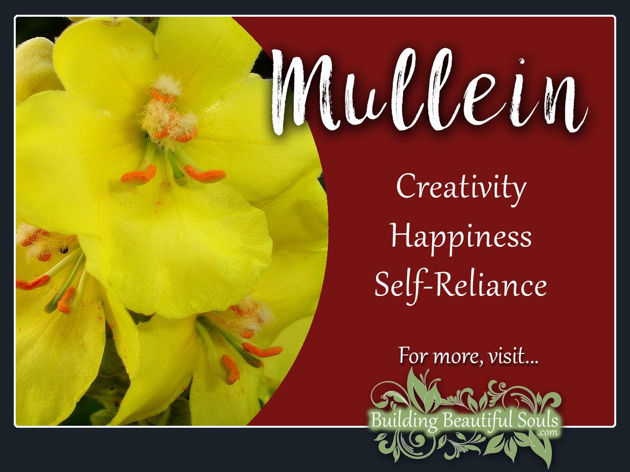 Mullein Meaning Symbolism Flower Meanings Flower Meanings Flower Bouquet Wedding Plant Symbolism