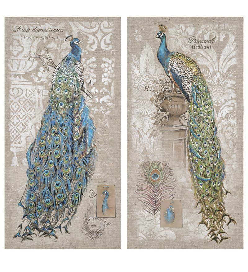 Peacock Canvas Wall Décor, Set of 2