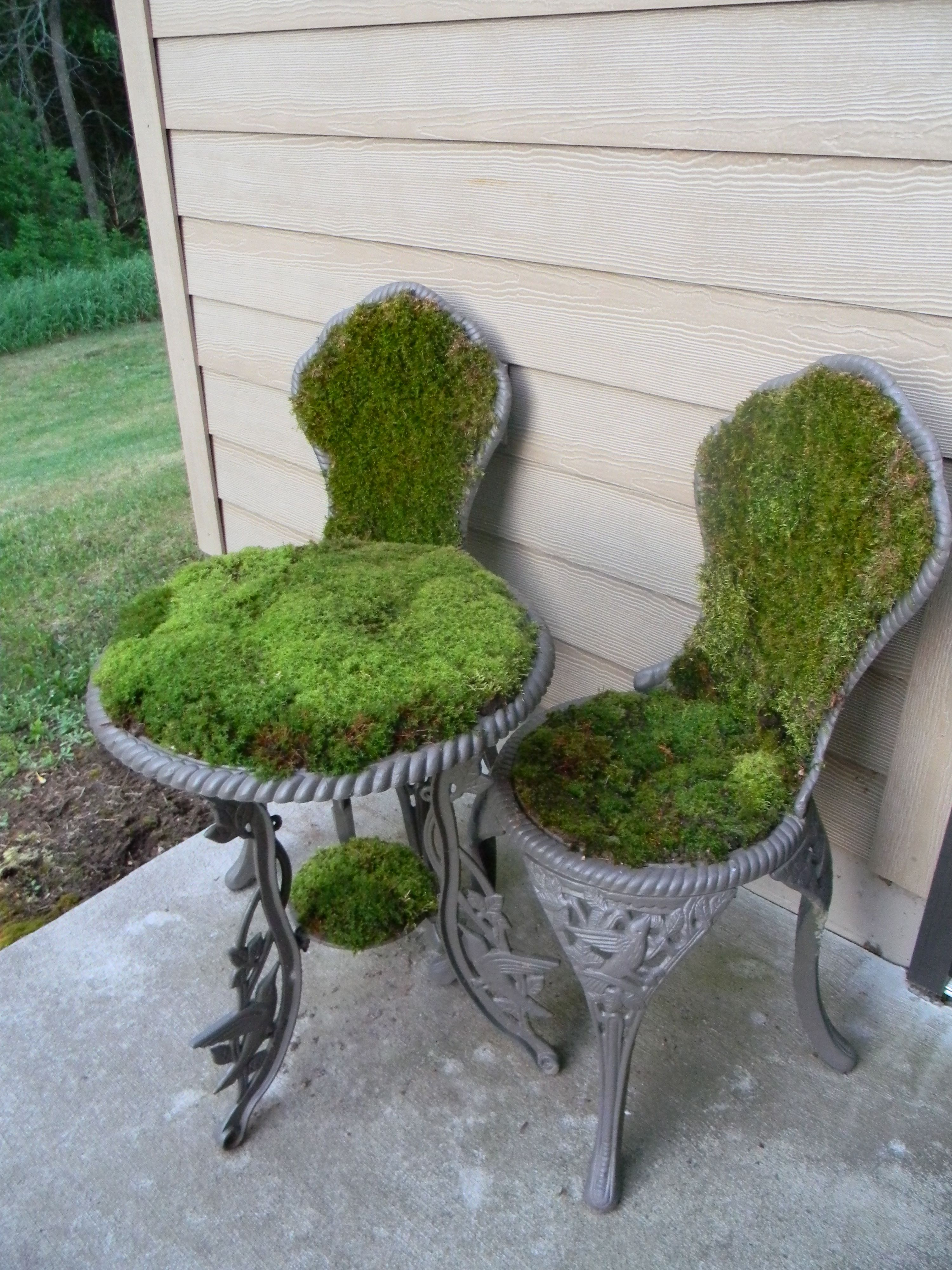 The moss table and chairs I made :) | Garden | Pinterest | Gardens ...