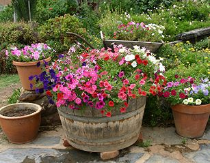 outside flower pot arrangements | outdoor flowers containers