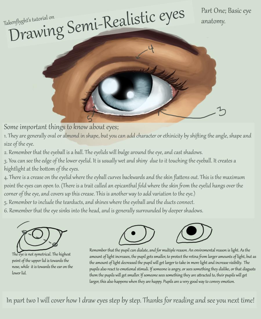 Eyes Part 1 - Basic Anatomy by TakenFlyght.deviantart.com on ...
