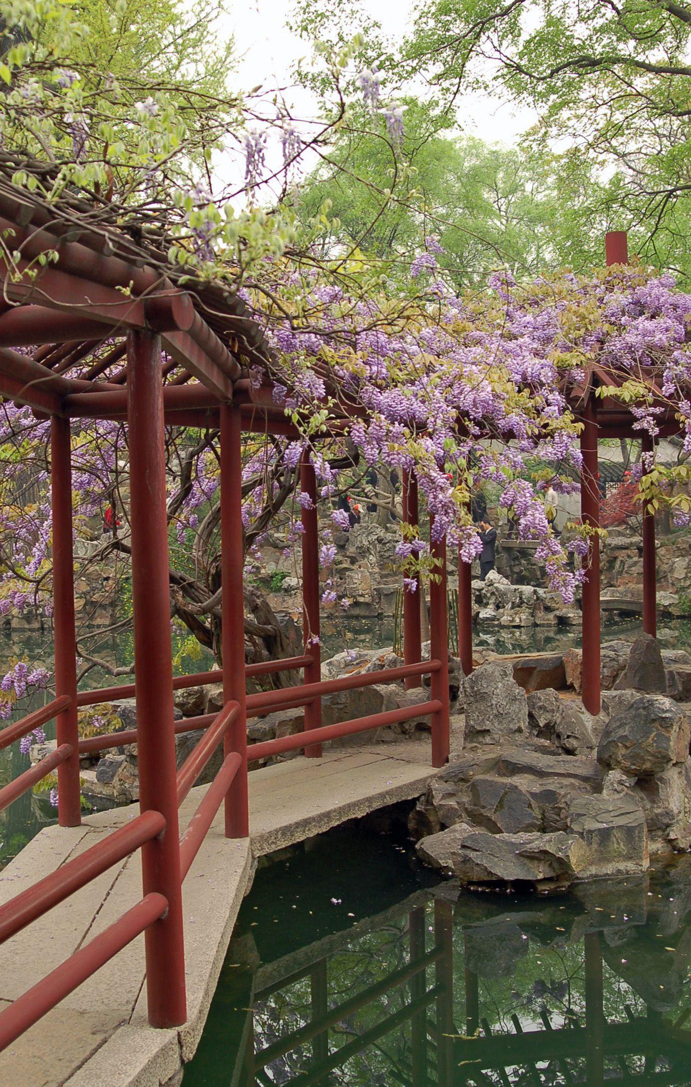 Dorable East Garden Chinese Frieze - Brown Nature Garden ...