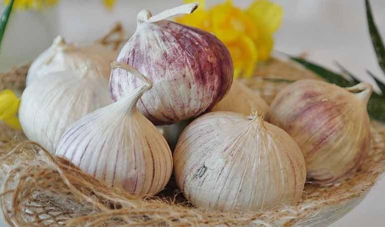 Uñas más resistentes con ajo y aceite de oliva (con ...