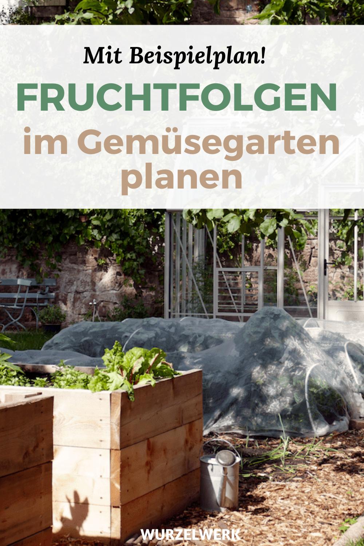 Fruchtfolge Planen Im Gemusegarten Starkzehrer Mittelzehrer Schwachzehrer Wurzelwerk In 2020 Hochbeet Holz Hochbeet Permakulturgarten