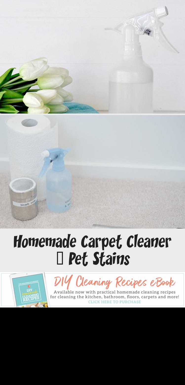 Easy and effective diy carpet cleaner for pet stains to