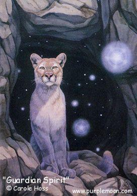 o majestic orbs cougar