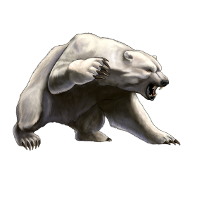 Bear Png Free Images Polar Bear Art Polar Bear Tattoo Angry Bear