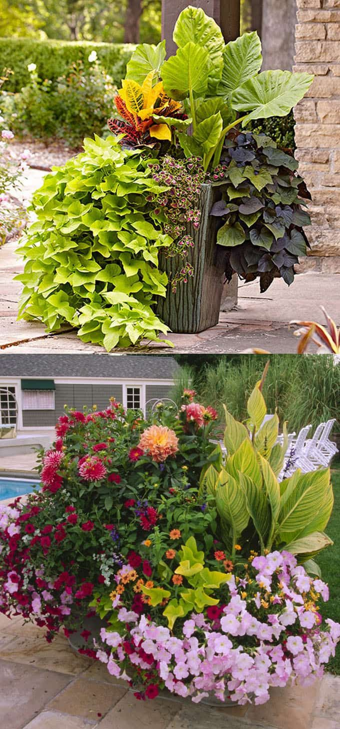 24 Stunning Container Garden Designs With Plant List For Each And Lots Of  Designer Tips!