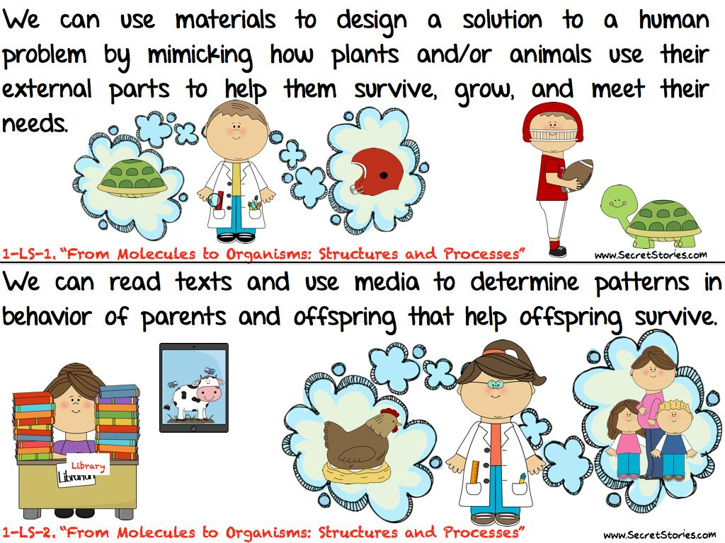 Cutest Ever Common Core Science Standards Posters For