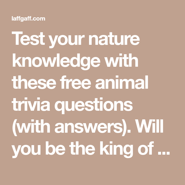 Animal Trivia Questions And Answers