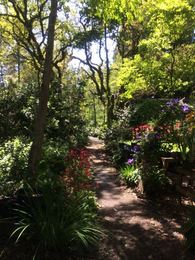 Park Art|My WordPress Blog_Tonys Garden Center Happy Valley