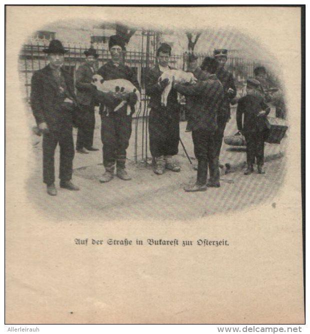 Ein Besuch Im Kabelwerk Artikel Mit Drucken Entnommen Aus Zeitschrift 1931 Artikelnummer 593917012 Drucken Zeitschriften Kabel