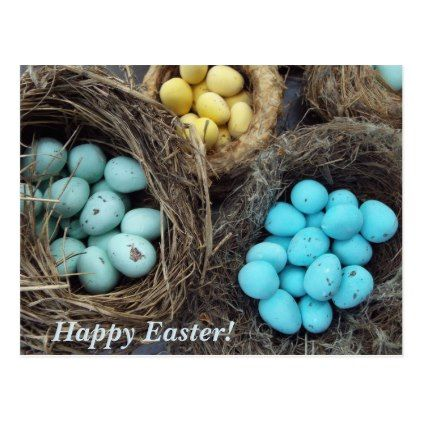 Speckled easter eggs real birds nest photograph postcard speckled easter eggs real birds nest photograph postcard photographer gifts business diy cyo personalize unique photographer pinterest negle Image collections