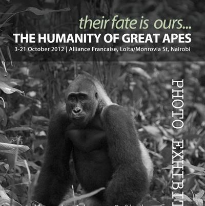 """GRASP Photo Exhibition Reception: """"Their Fate is Ours: The Humanity of Great Apes"""" http://www.facebook.com/graspunep"""