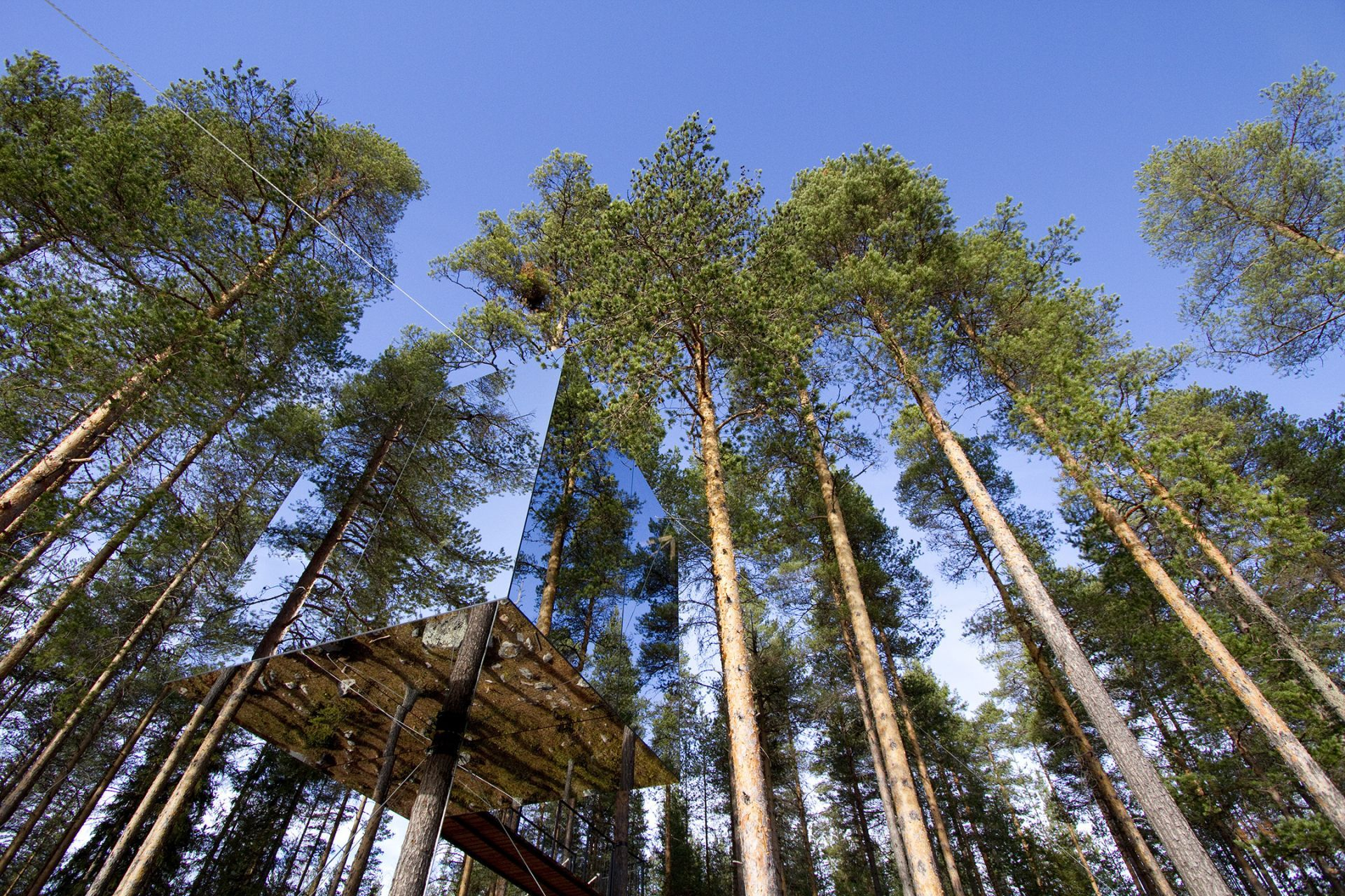 Mirrorcube Treehotel, Sweden is a lightweight aluminium structure ...