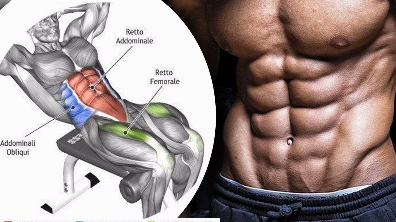New Video By مهووس عضلات كمال الاجسام On Youtube تمارين البطن والظهرتمارين البطن فى المنزلتمارين البطن للمبتدئينتمارين البطن السفل Abs Workout Gym Life Workout