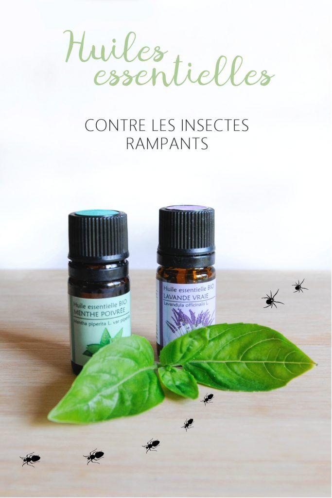 mes huiles essentielles contre les insectes produits. Black Bedroom Furniture Sets. Home Design Ideas