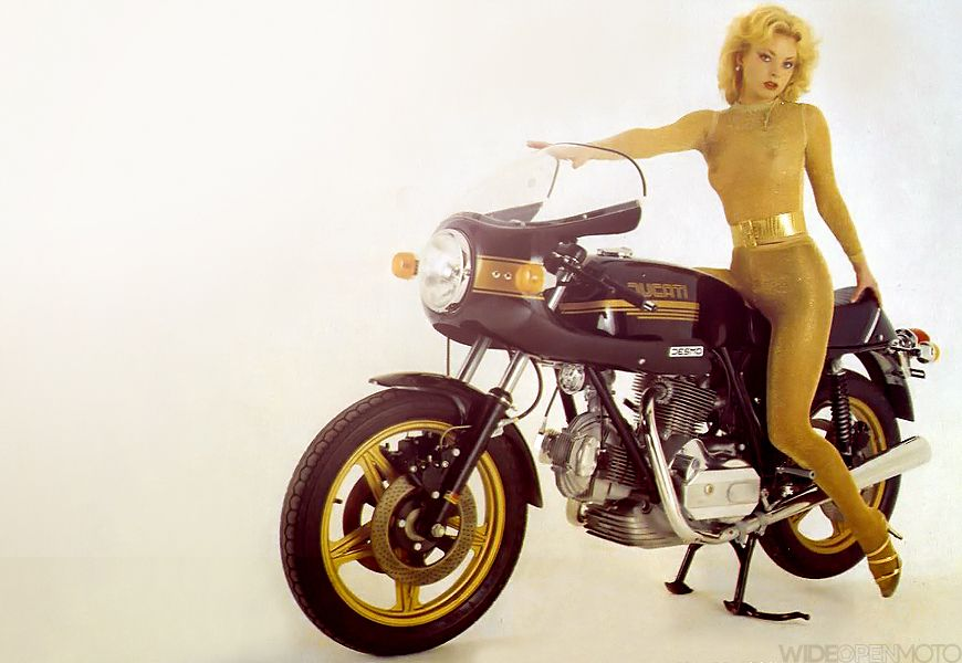 Ducati golden girl girls pinterest chicas de oro - Chicas de oro ...