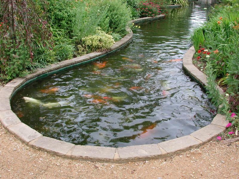 Koi fish pond idea for ending it gardening landscaping for Coy ponds design