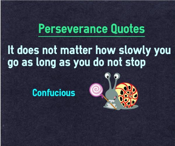 Quotes To Live By With Explanation: Perserverance Quotes It Does Not Matter How Slowly You Go