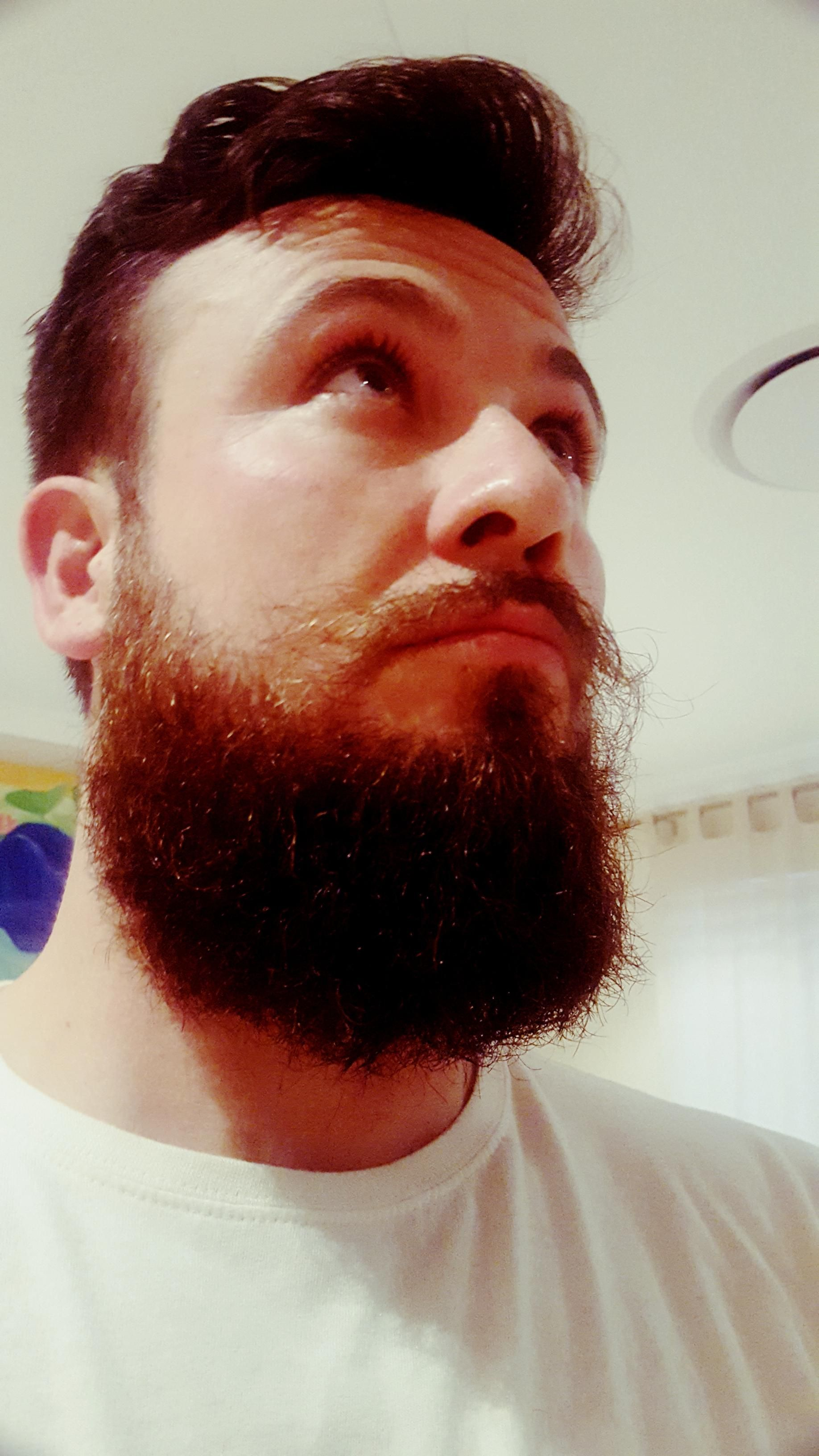 a trim a day keeps the weak chin away | not so average beard