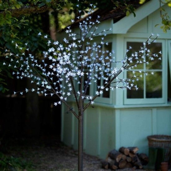 Christmas lights our pick of the best blossom trees Outdoor christmas tree photos