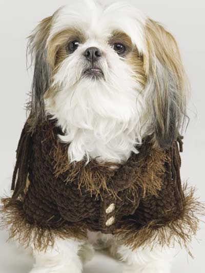 Fringed Dog Jacket & Booties--free crochet pattern | Ropa y ...