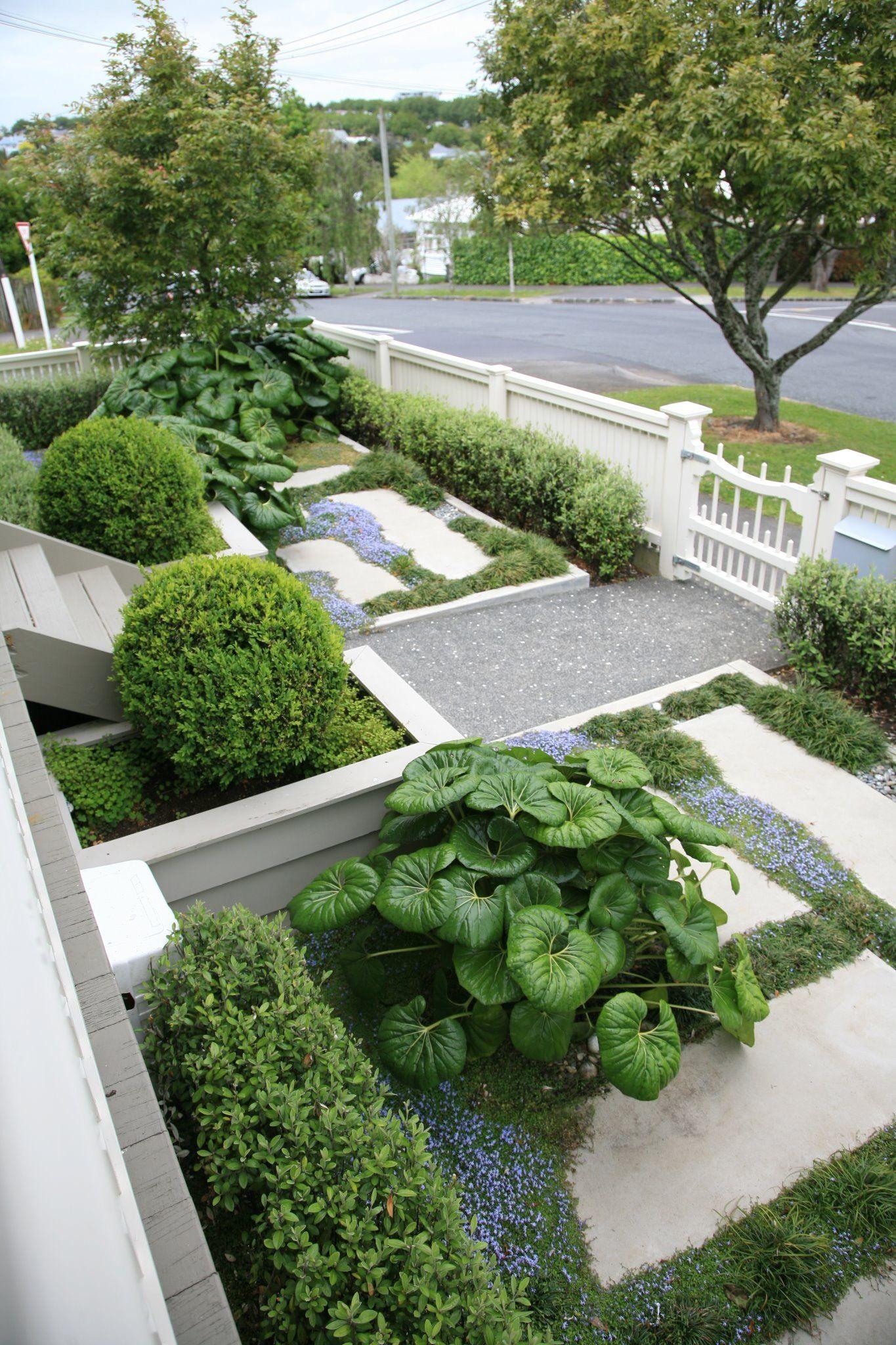 Structured Street Front Garden | Terrace garden design ...
