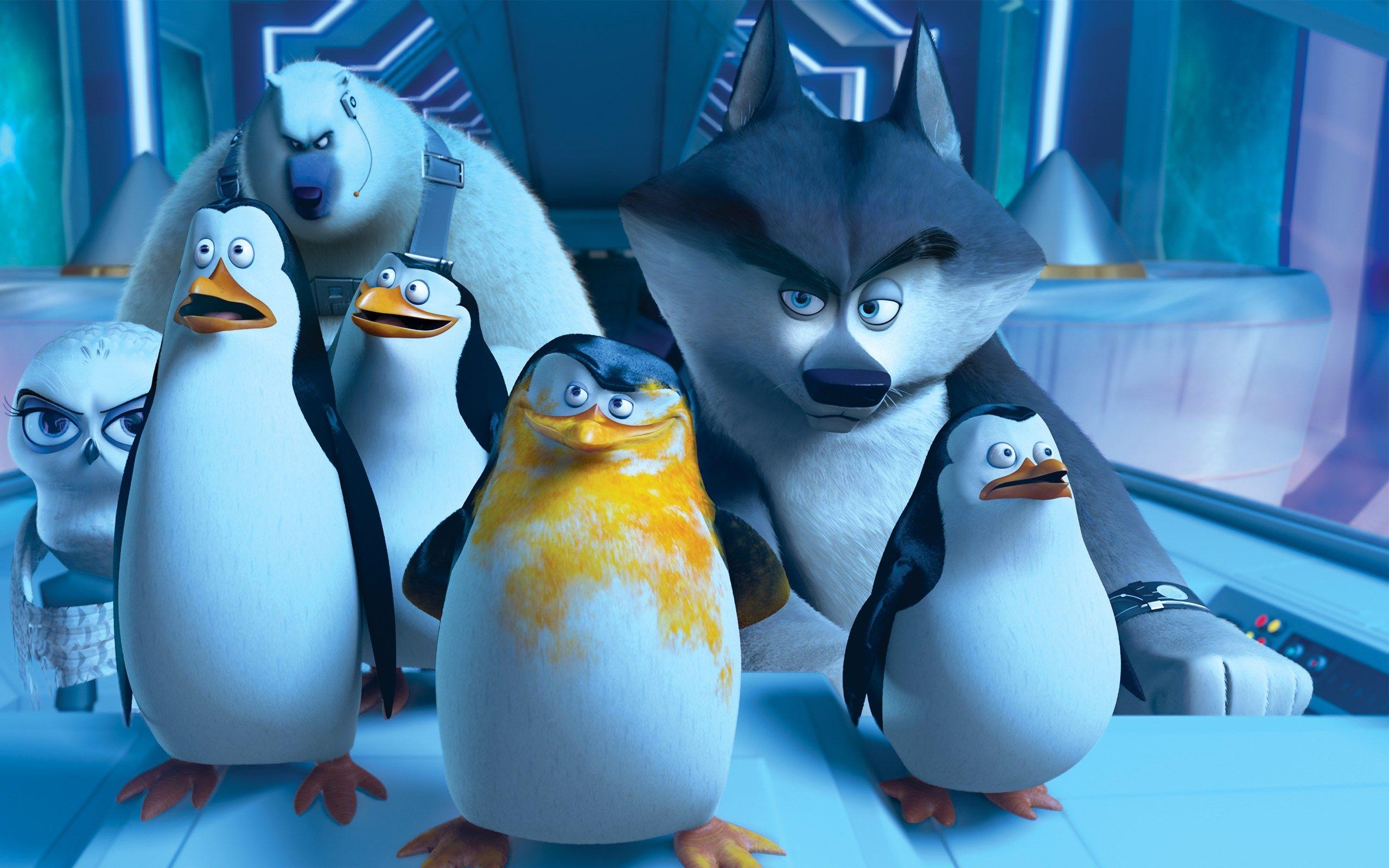 penguins of madagascar wallpaper - full hd wallpapers, photos