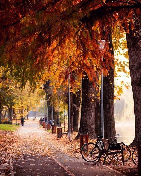 Resultado de imagen para paisaje otoño ciudad