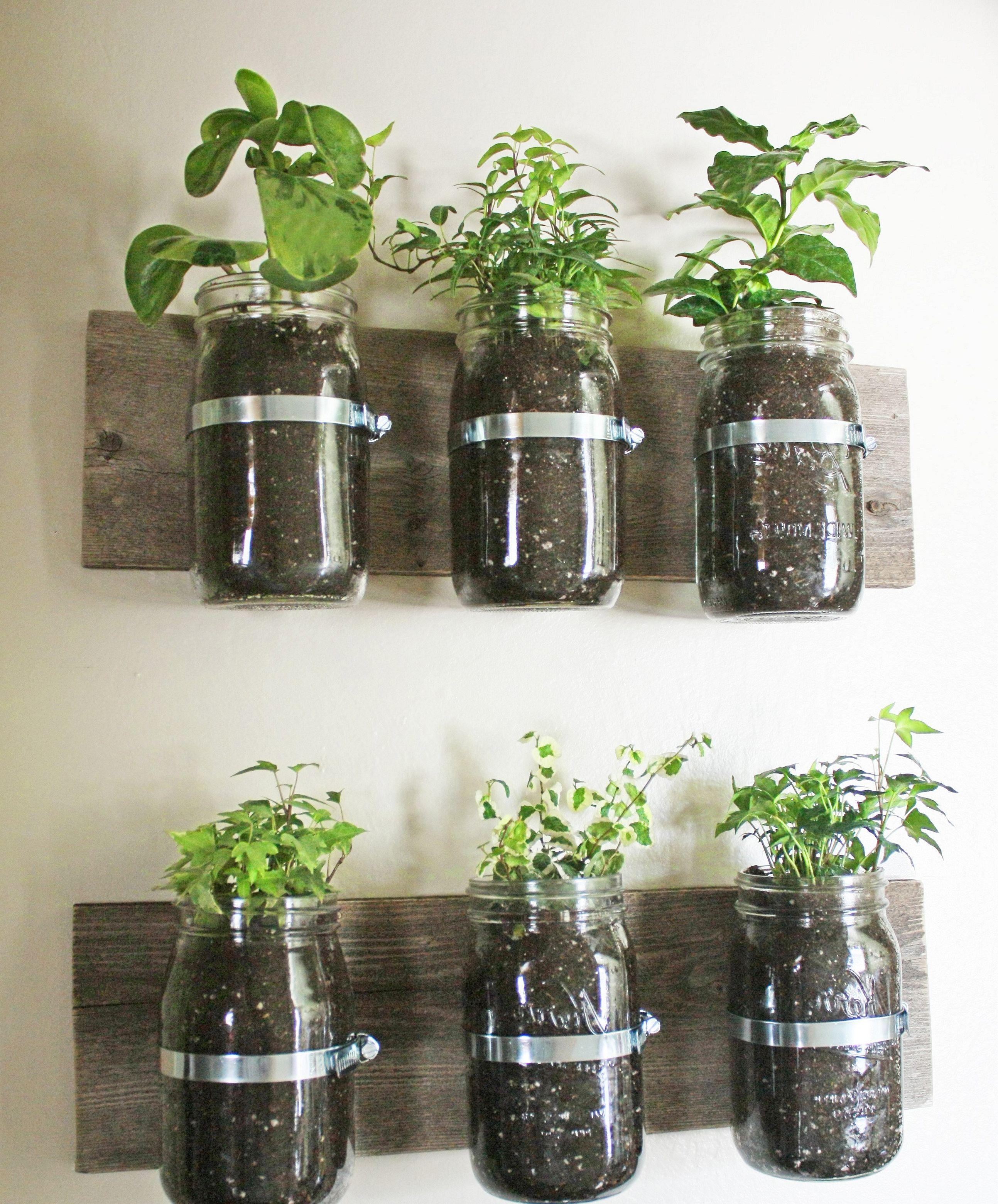 planter wall a creative designs freshouz com mason on indoor herb garden diy wall mason jars id=79484