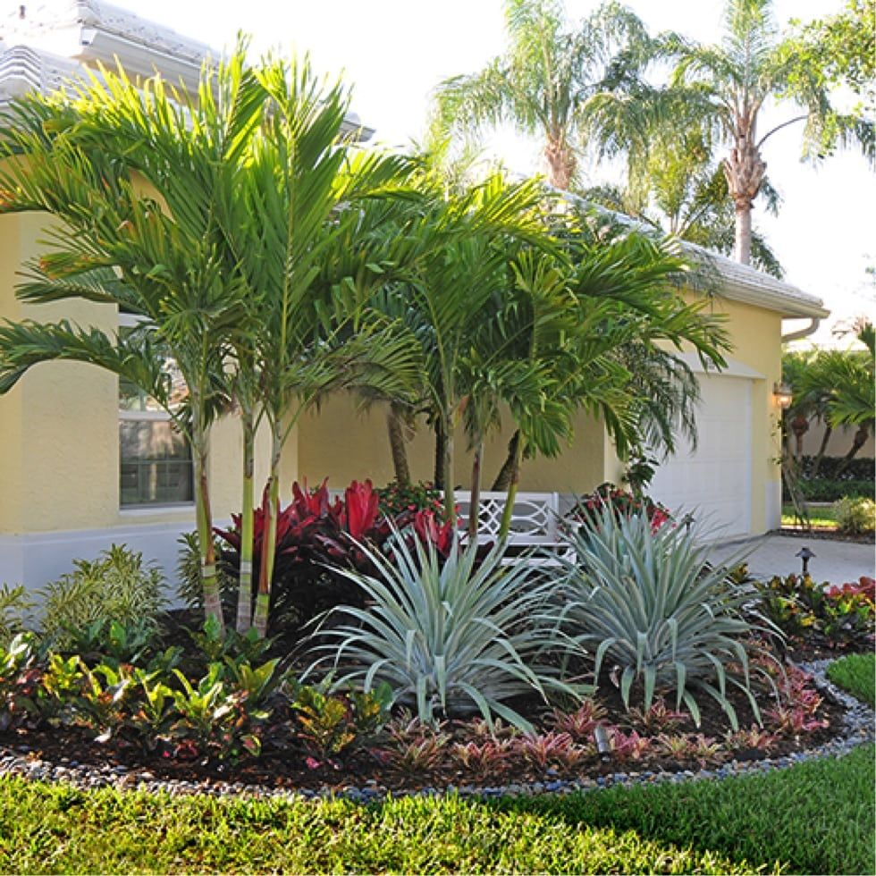 Landscape Designer Palm Beach Gardens Masters Degree In Landscape Architecture In 2020 Tropical Landscape Design Tropical Backyard Landscaping Tropical Landscaping