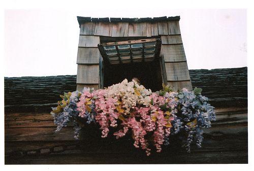 #rustic #window #flowers #window box #pink #blue #pale
