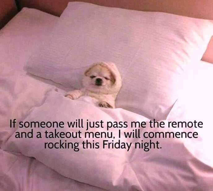 Pin By Laurie Benson On Made You Laugh Good Night My Friend Positive Quotes Funny