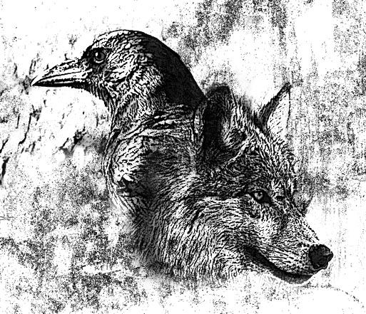 The Wolf And Raven By Sorrowfulraven On Deviantart Raven And Wolf Crow Tattoo Design Wolf Tattoo Design