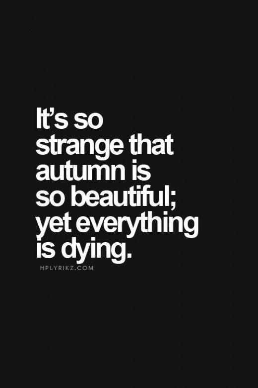 25 Deep Quotes About Life Sincerely Seriously Pinterest Life