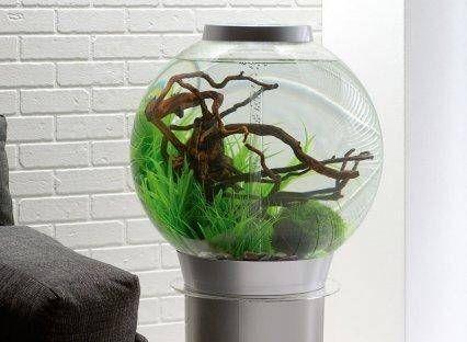 Biorb Fish Tank Stand