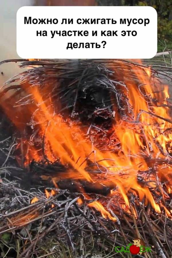 сторона можно ли спалить фотографию пластиковый
