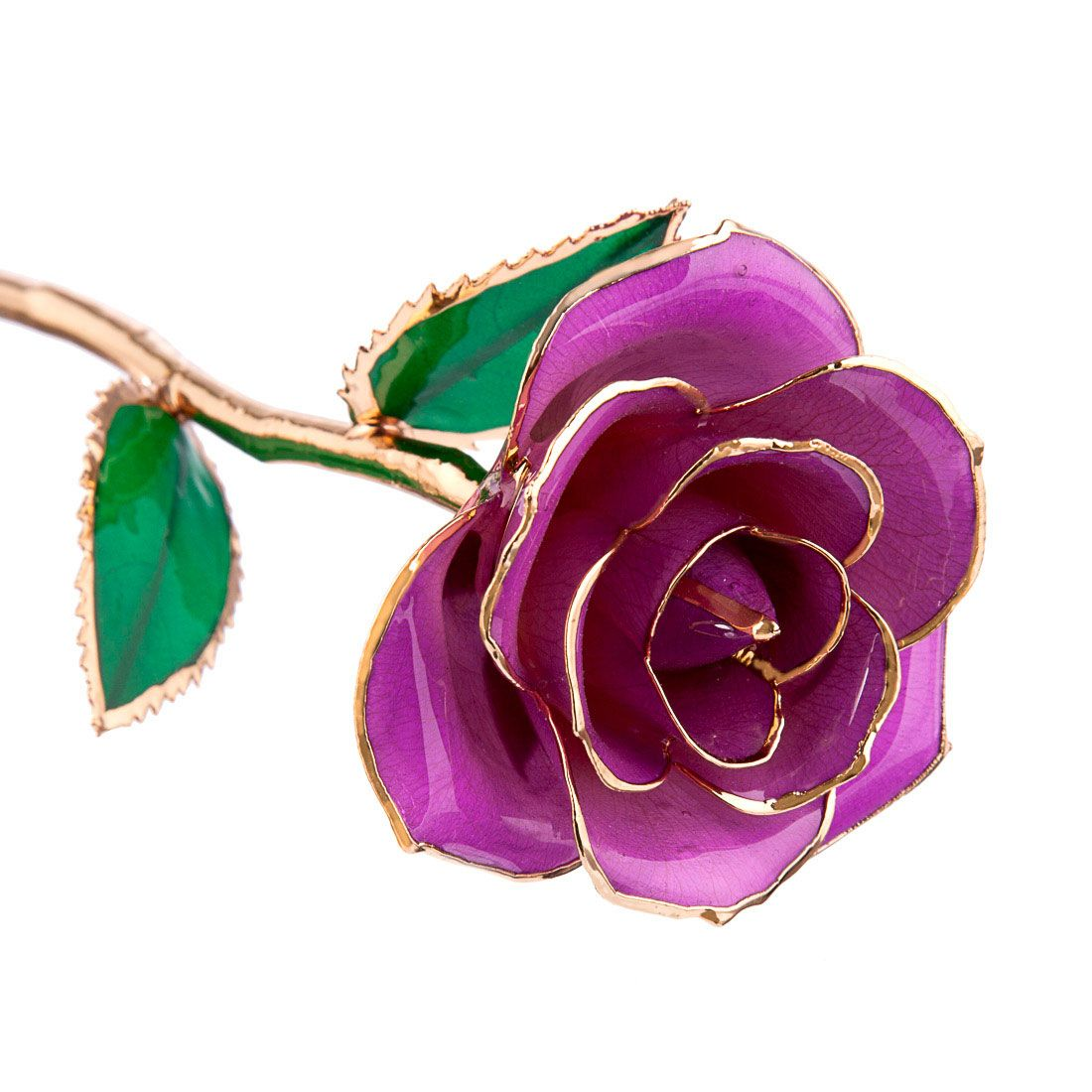 Radiant Orchid 24kt Gold Dipped Rose Steven Singer Jewelers