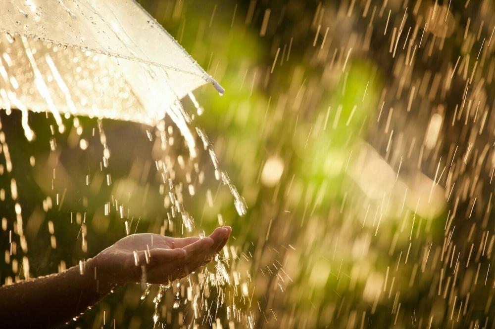Kto Govorit Chto Plachet Dozhd Net On Ne Plachet On Soboj Laskaet Smyvaet Vsyo Plohoe Strahi Lozh I Chto To Green Nature Nature Backgrounds Rain